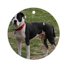 Bully Dogs 2 Round Ornament