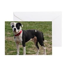 Bully Dogs 2 Greeting Card