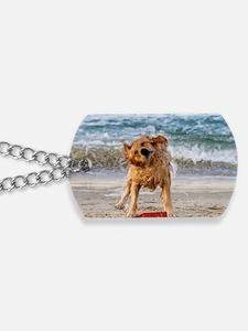 Golden Retriever 4 Dog Tags