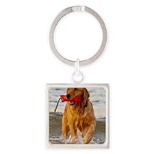 Golden Retriever 9 Square Keychain