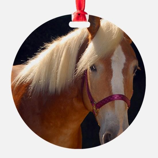 Sunlit Horse Ornament