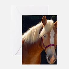 Sunlit Horse Greeting Card