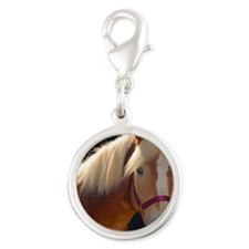 Sunlit Horse Silver Round Charm