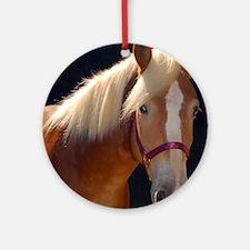 Sunlit Horse Round Ornament