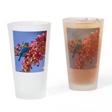Bluebird in Blossoms Drinking Glass