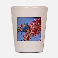 Bluebird in Blossoms Shot Glass