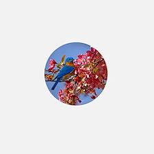 Bluebird in Blossoms Mini Button