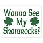 Wanna See My Shamrocks Small Poster