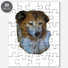laddy2trans Puzzle