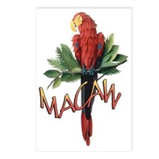 Macaw Postcards (Package of 8)