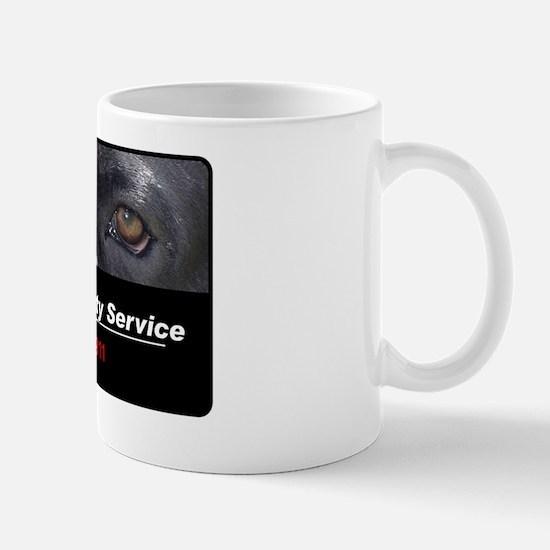 security3 Mug