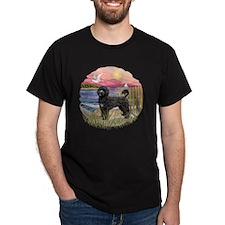 PinkSunet-blackPWD2 T-Shirt