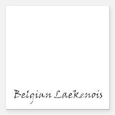 "belgian laekenois white Square Car Magnet 3"" x 3"""