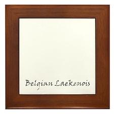 belgian laekenois white Framed Tile