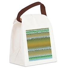 mosaicshowercurtain Canvas Lunch Bag