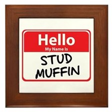 Hello My Name is Stud Muffin Framed Tile