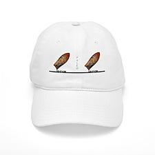clovis2CC Baseball Cap
