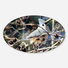 TuftedTitmouse10x8 Sticker (Oval)