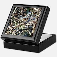 TuftedTitmouseiPad Keepsake Box