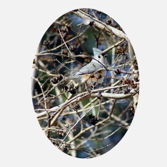 TuftedTitmouseiPad2cover Oval Ornament