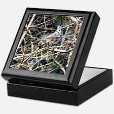 TuftedTitmouseiPad2 Keepsake Box