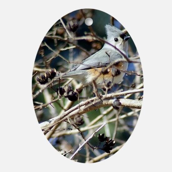 TuftedTitmouseSmallBottle Oval Ornament