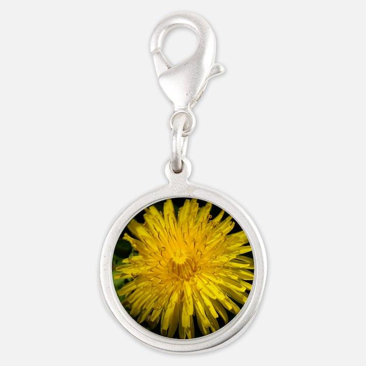 dandelion1 Silver Round Charm