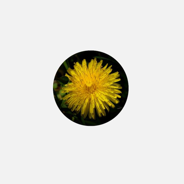 dandelion1 Mini Button