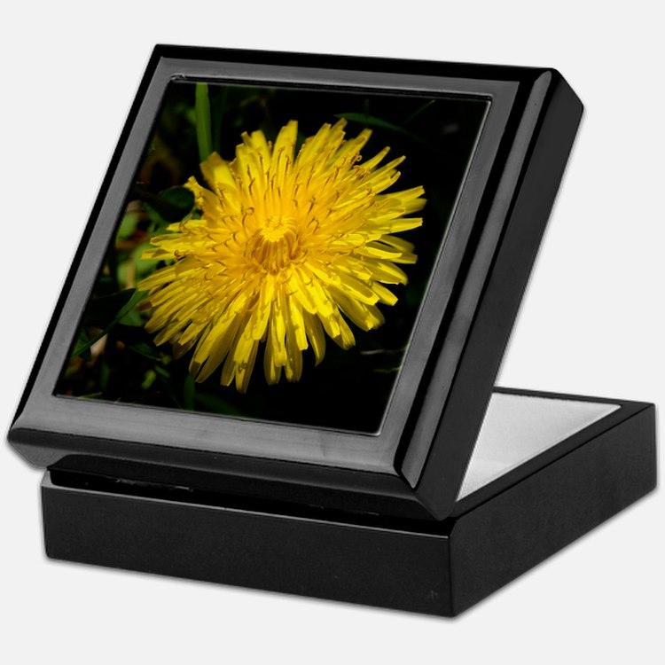 dandelion1 Keepsake Box