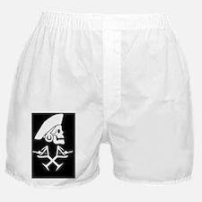 Martini Pirate wall clock Boxer Shorts