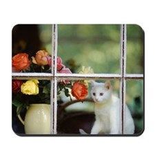 White cat sitting in window next to flow Mousepad