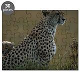 Cheeta Puzzles