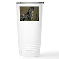 Cheetah (Acinonyx jubatus) and  Travel Mug