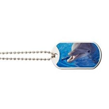 Dolphin in pool, Close-up of head Dog Tags