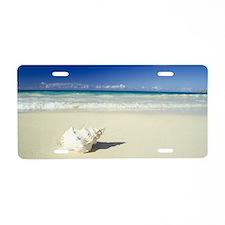 Shell lying on beach Aluminum License Plate