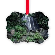 El Yunque Rainforest, Puerto Rico Ornament