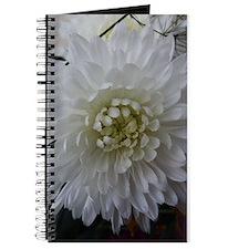 White Chrysanthemum Journal