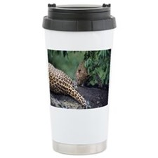 Leopard cub (Panthera pardus),  Travel Mug