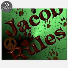 Jacob Rules shower Puzzle
