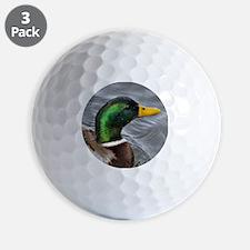 Male Mallard Golf Ball