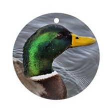Male Mallard Round Ornament