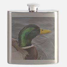 Male Mallard Flask