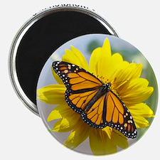 9x7.5_mpad monarch 315 Magnet