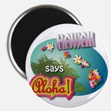 HAWAII 3 Magnet