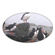 puffin conference Decal
