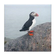 puffin standing watch Tile Coaster