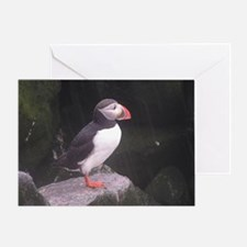 puffin on the rocks Greeting Card