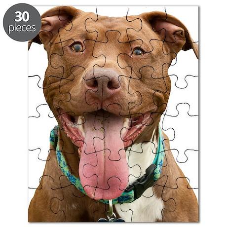 Pit Bull 14 Puzzle