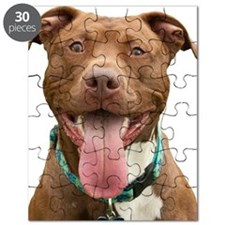 Pit Bull 14 Puzzle