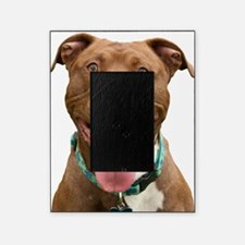 Pit Bull 14 Picture Frame